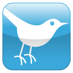 256px-Twitter_Shiny_Icon.svg