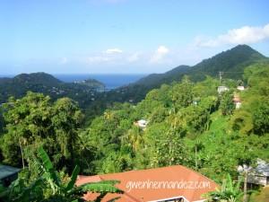 St. Lucia Mountain View